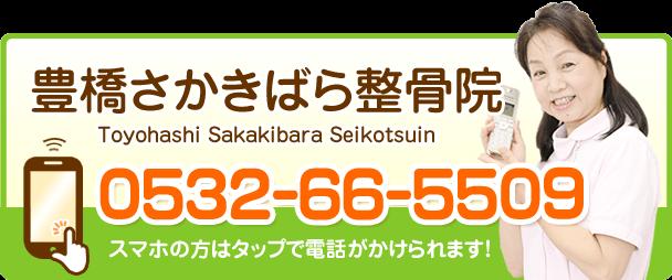 お問合せ電話番号0532-66-5509